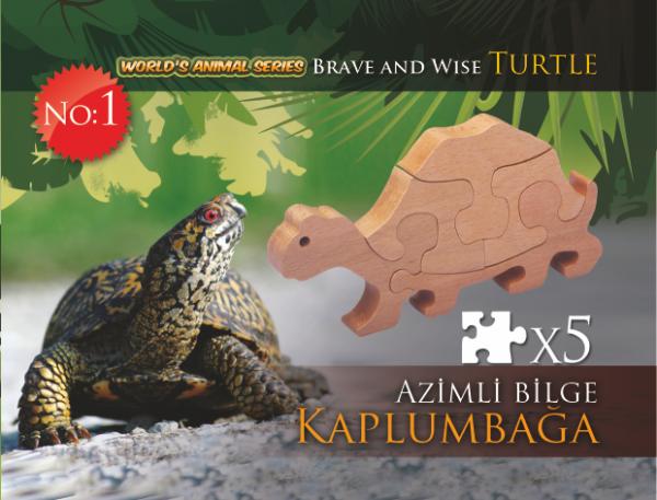 Azimli Bilge Kaplumbağa