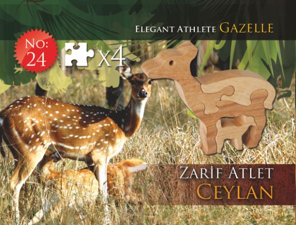 Zarif Atlet Ceylan