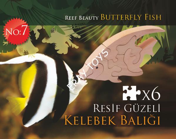 Resif Güzeli Kelebek Balığı